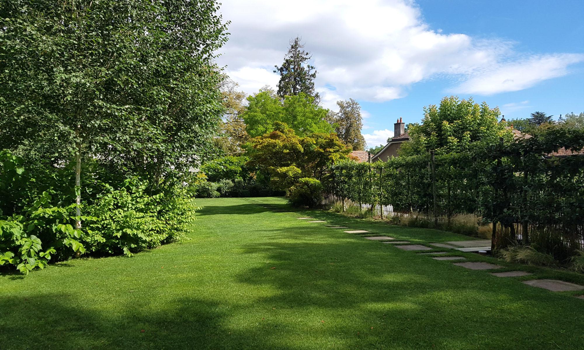 L'entreprise est compétente pour réaliser différents types de travaux dans les jardins et espaces publics.